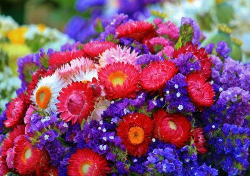 Waalwijk tweede bij Entente Florale
