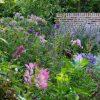 Open Tuinen Midden Brabant 21 en 22 april